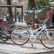pedego electric bikes canada at park