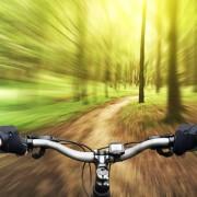 pedego canada electric bikes singletrack 2