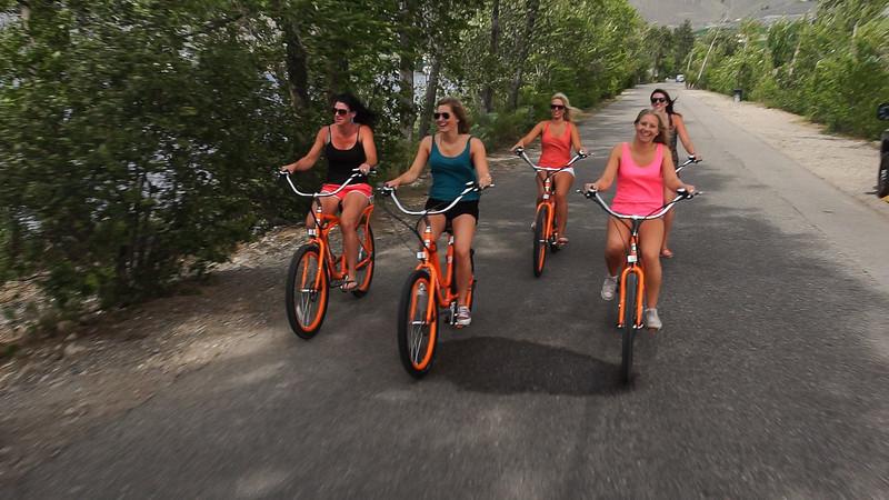 rental bikes osoyoos pedego canada