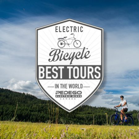 World's Best Pedego Tours