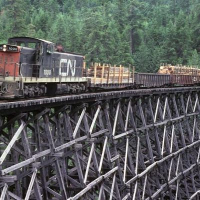 Take a ride on the Kinsol Trestle