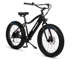 Electric Fat Tire Cruiser Bike